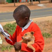 little boy reading package holding dog